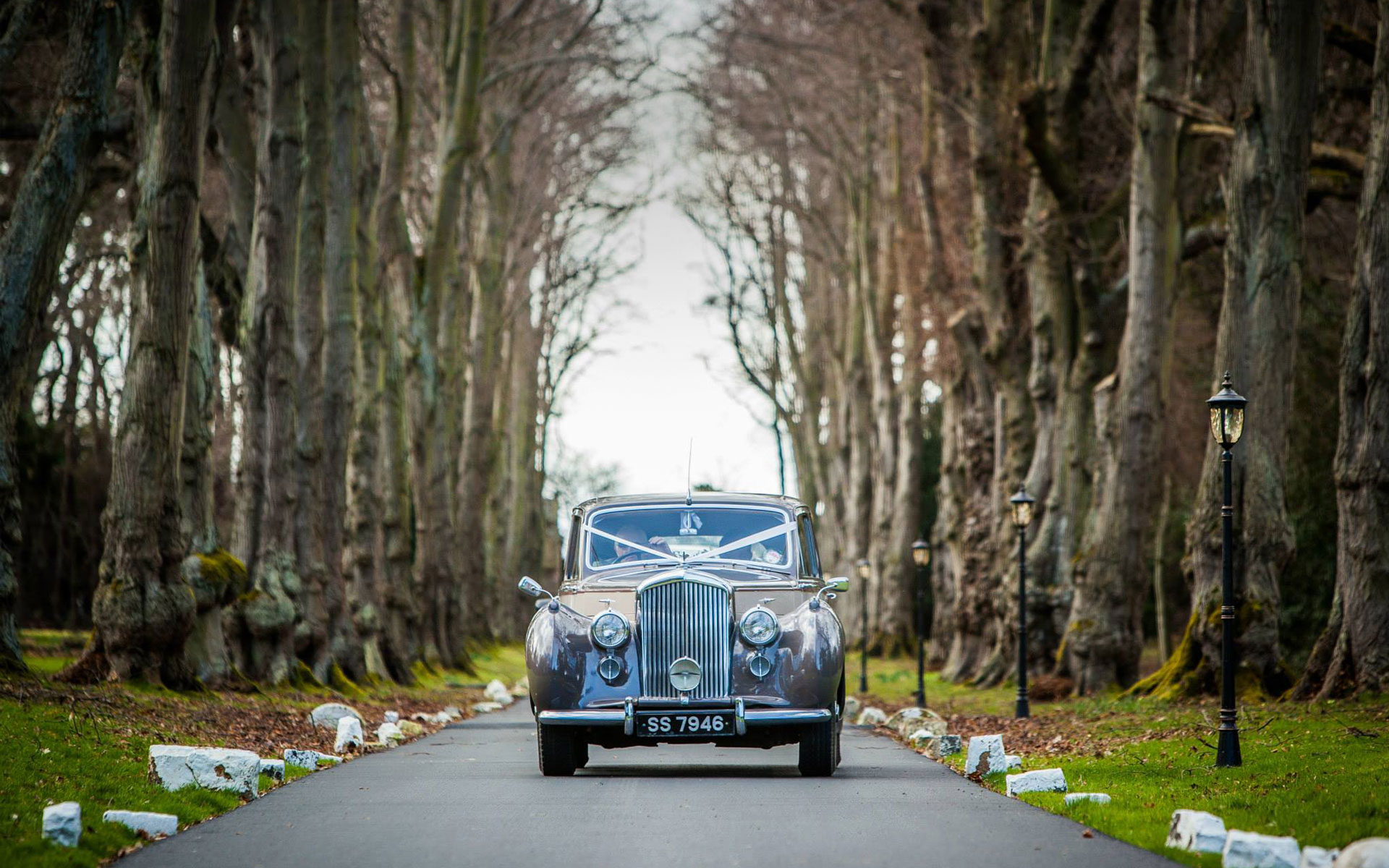 Bently car for wedding trasport